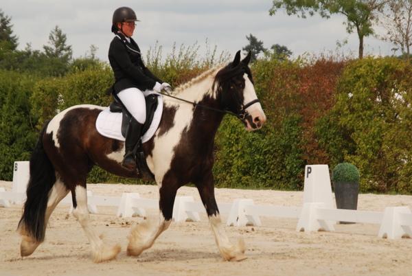 A cheval la coquine - 1 10